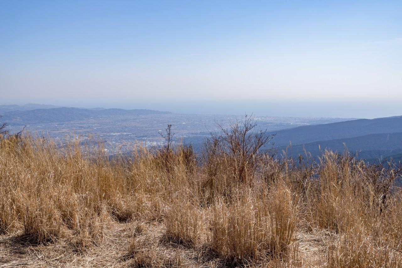 矢倉岳から見た足柄平野