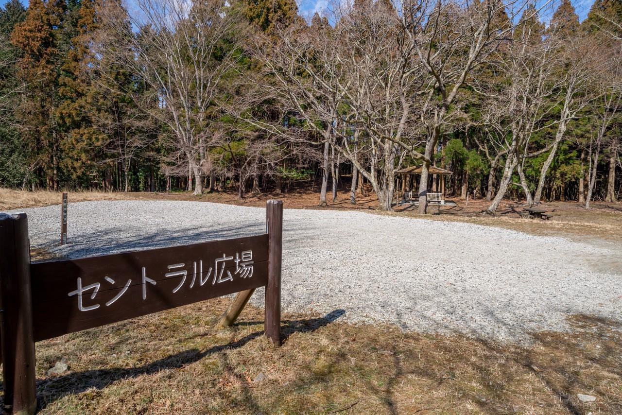 210223矢倉岳-058