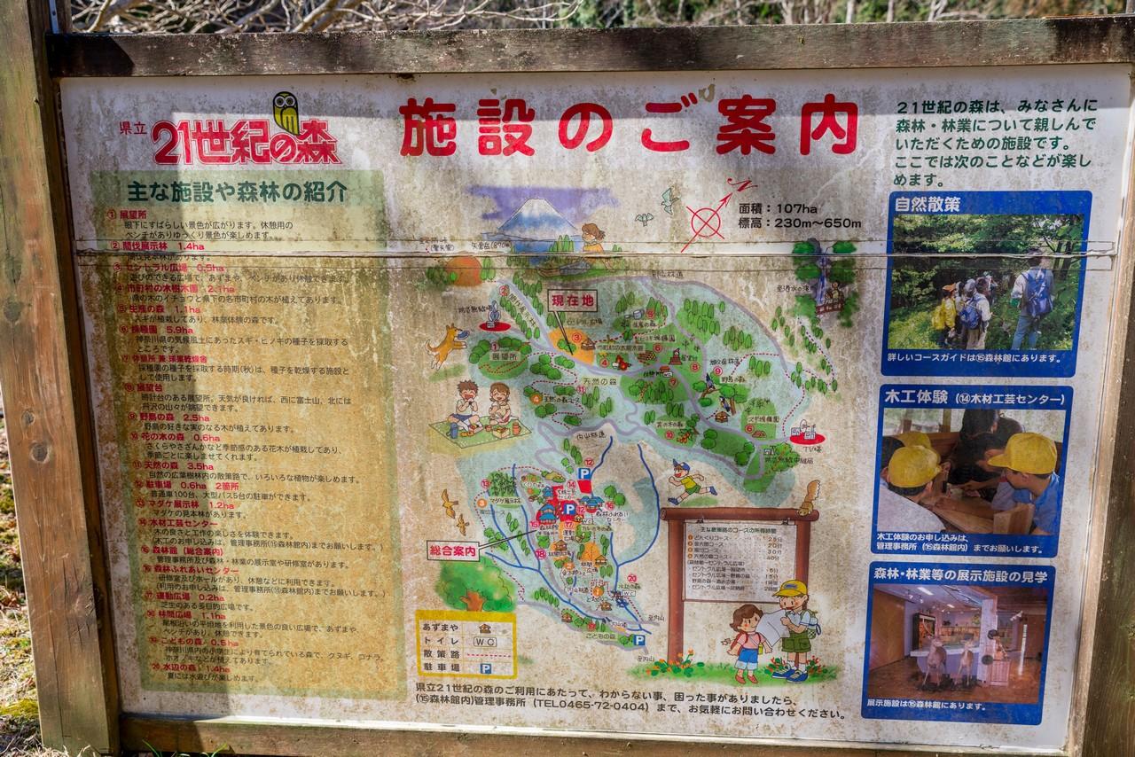 210223矢倉岳-059