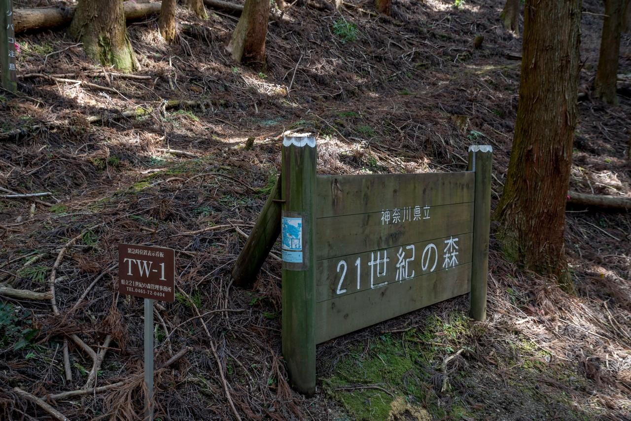 210223矢倉岳-065