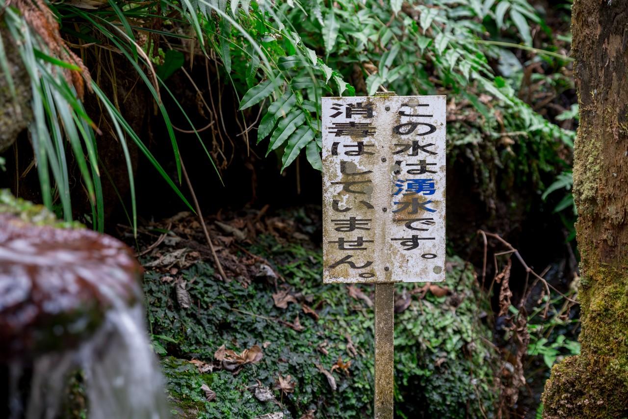 210223矢倉岳-078