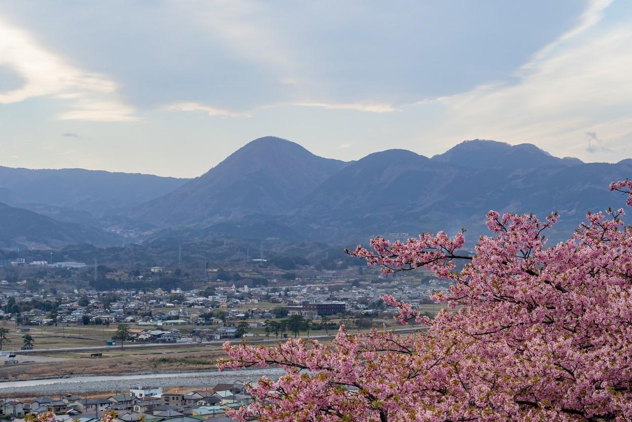 松田山から見た矢倉岳