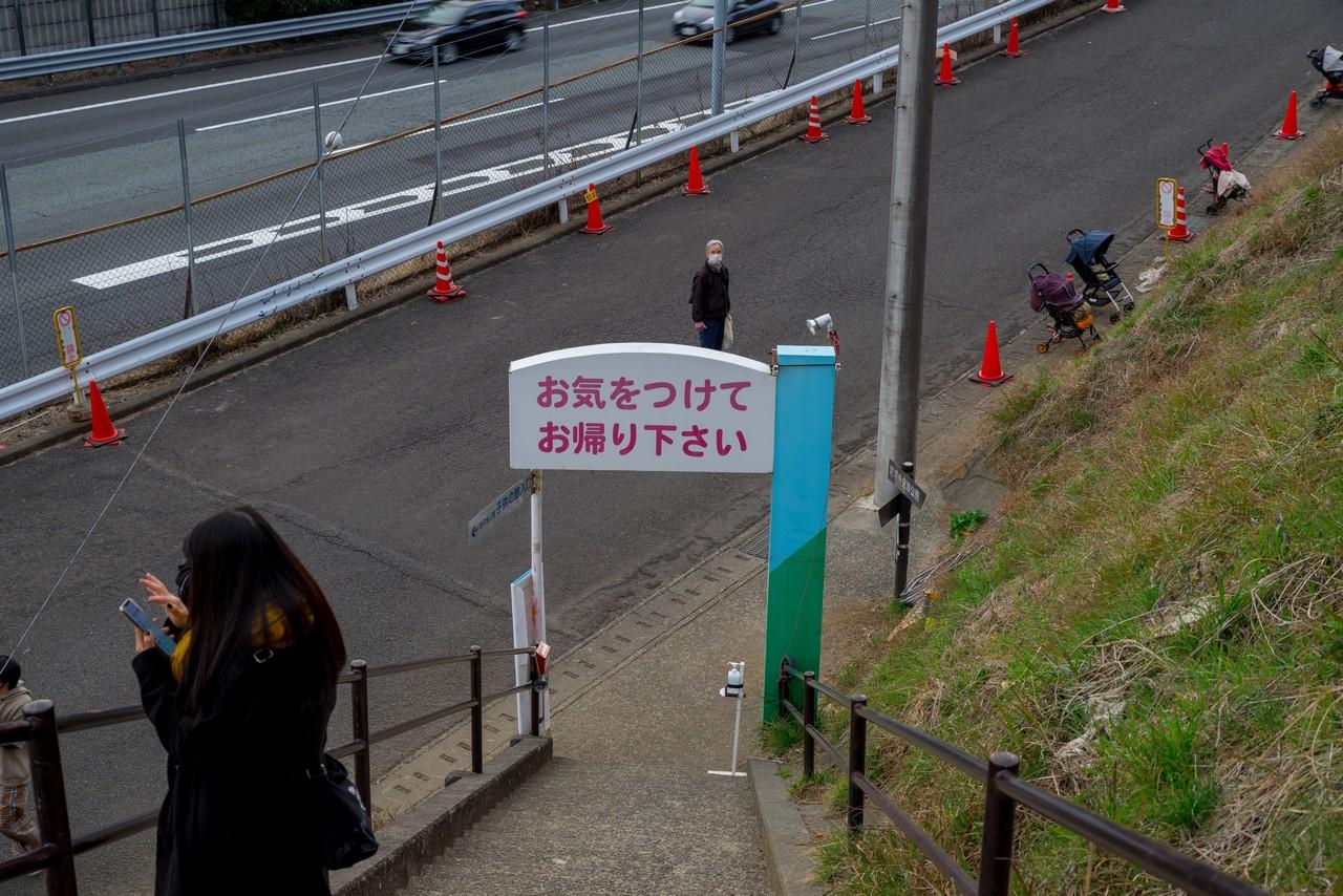 210223矢倉岳-094