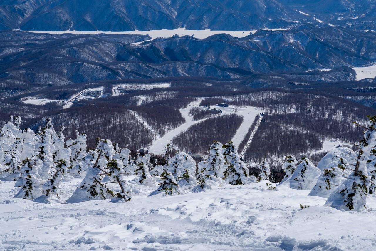 西大巓から見たグランデコスキー場