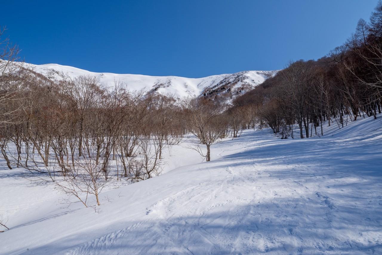 冬のヤカイ沢