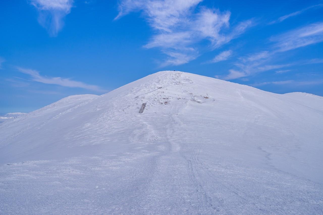 仙ノ倉山の山頂直下