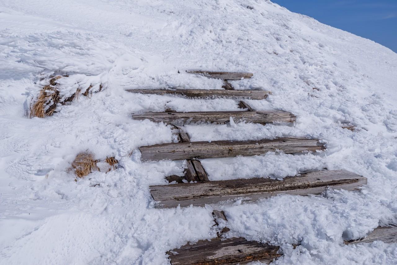 仙ノ倉山 山頂直下の木階段
