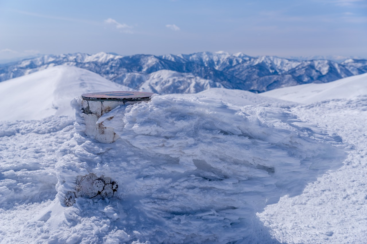 仙ノ倉山山頂のエビのしっぽ
