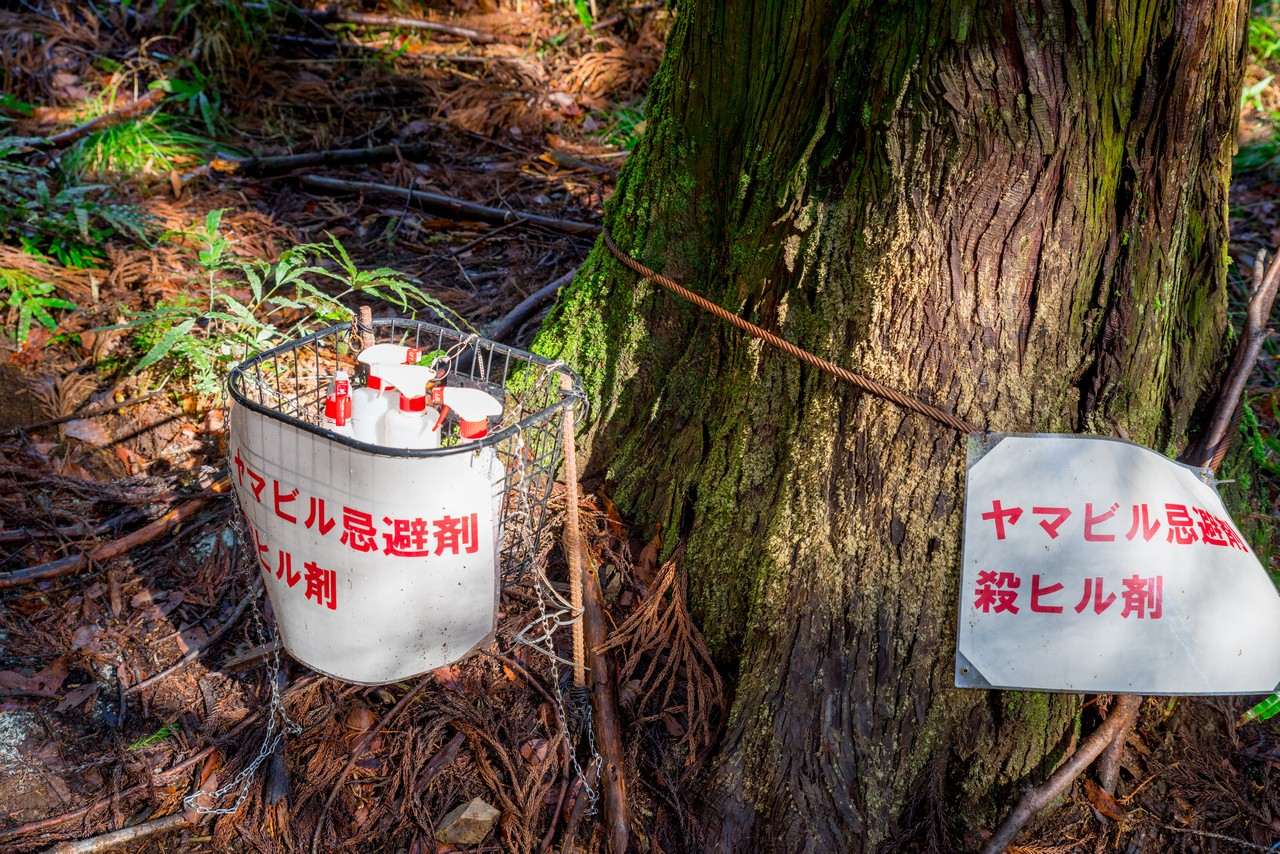 三峰山登山口のヤマビル忌避剤
