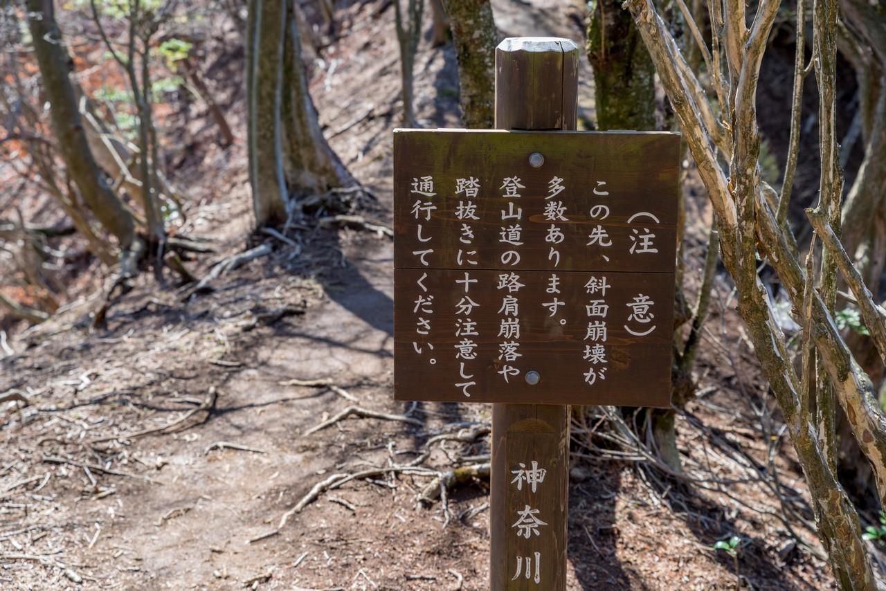 210314大山三峰山-039