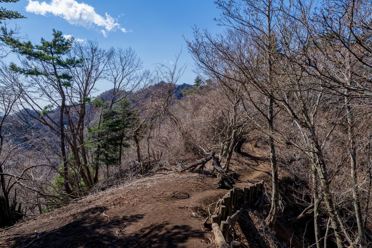 210314大山三峰山-041