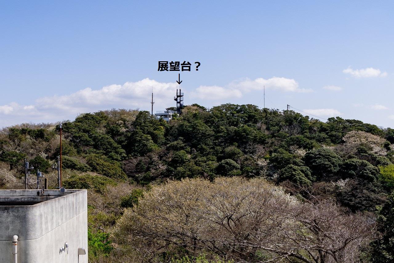 210324大楠山-049