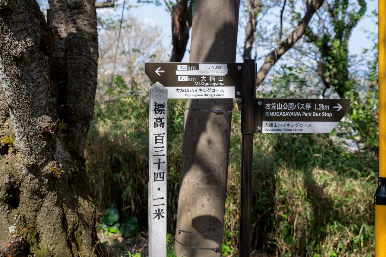 210324大楠山-082