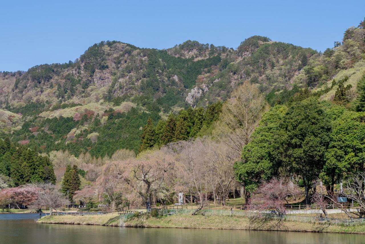 赤川ダムから見た古賀志山