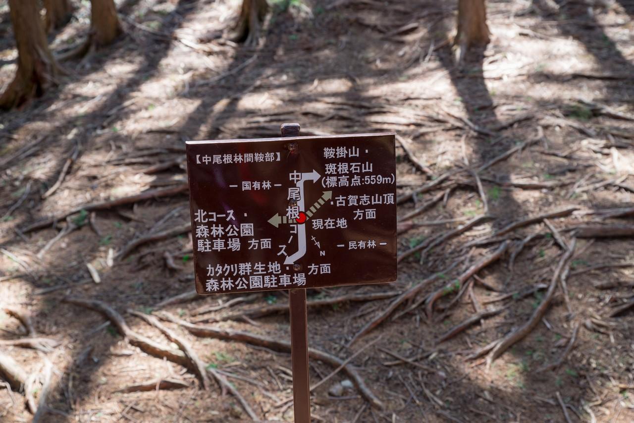 210410古賀志山-050