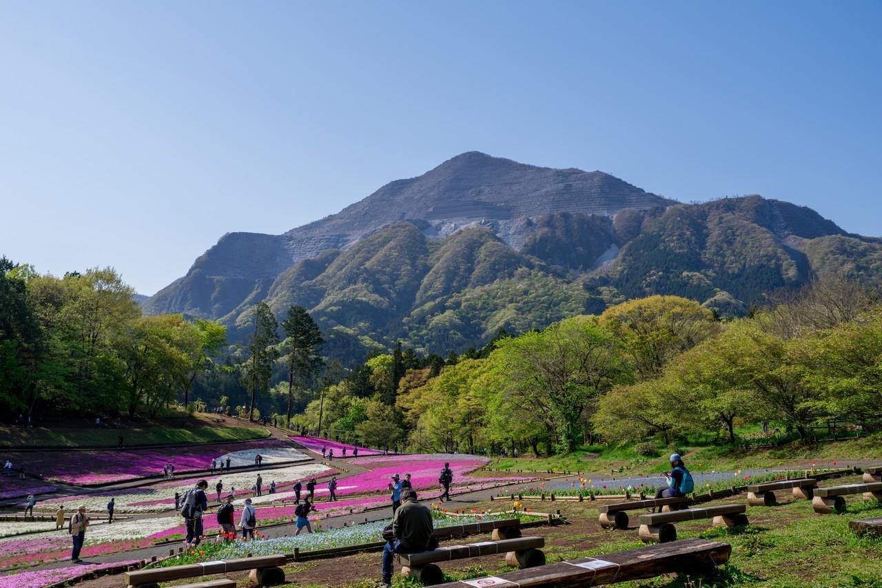 羊山公園 芝桜の丘の休憩スペース