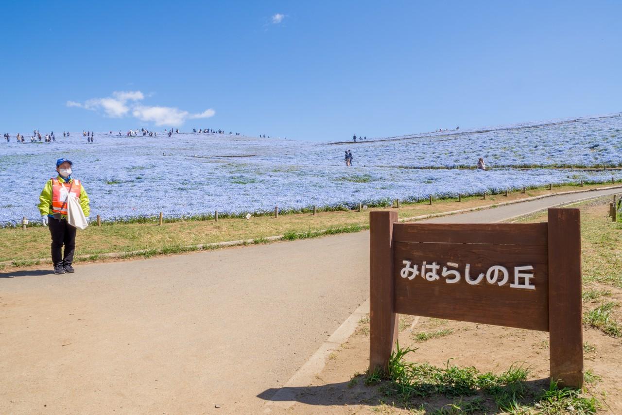 210426ひたち海浜公園-004