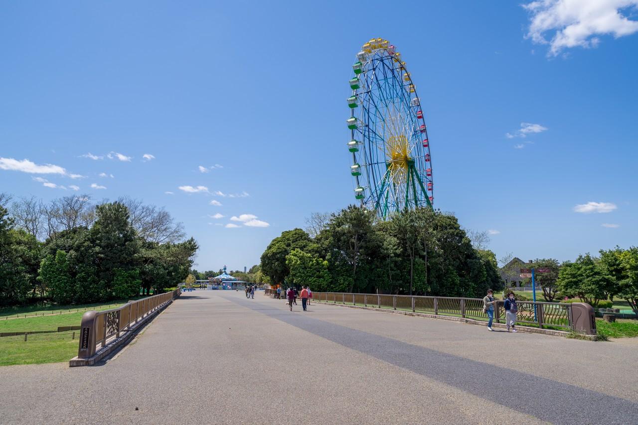 210426ひたち海浜公園-049