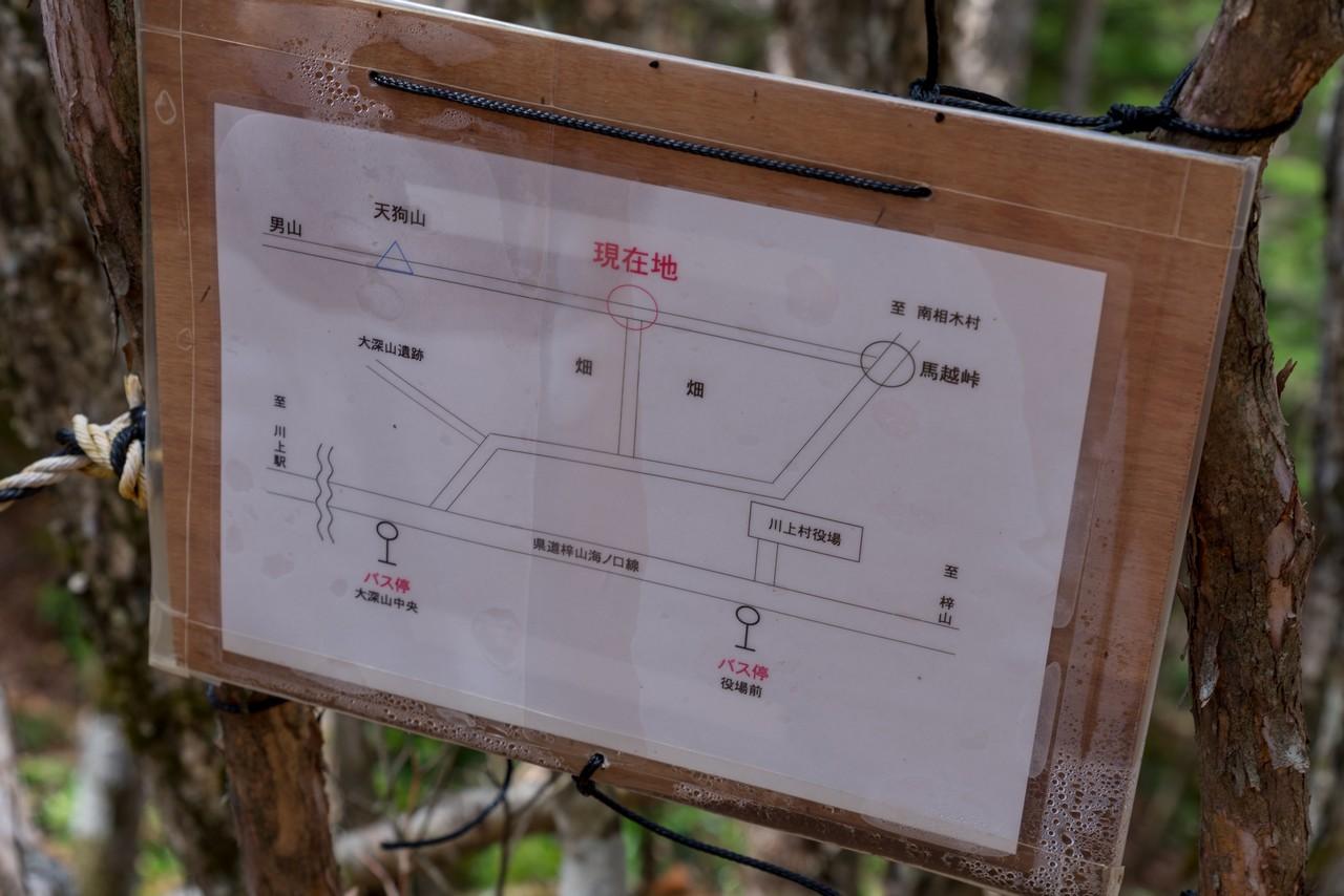 210504天狗山-039