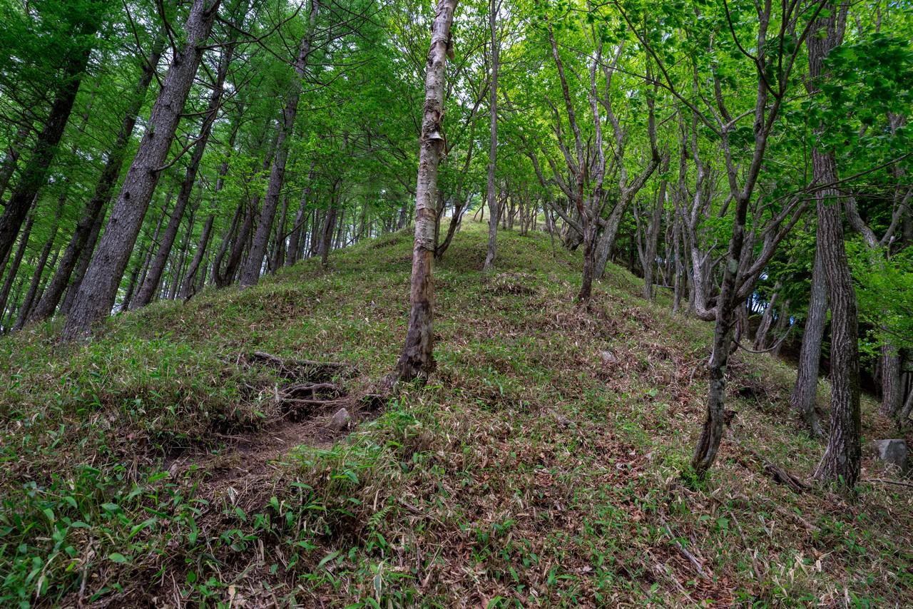 210604黒檜岳-035
