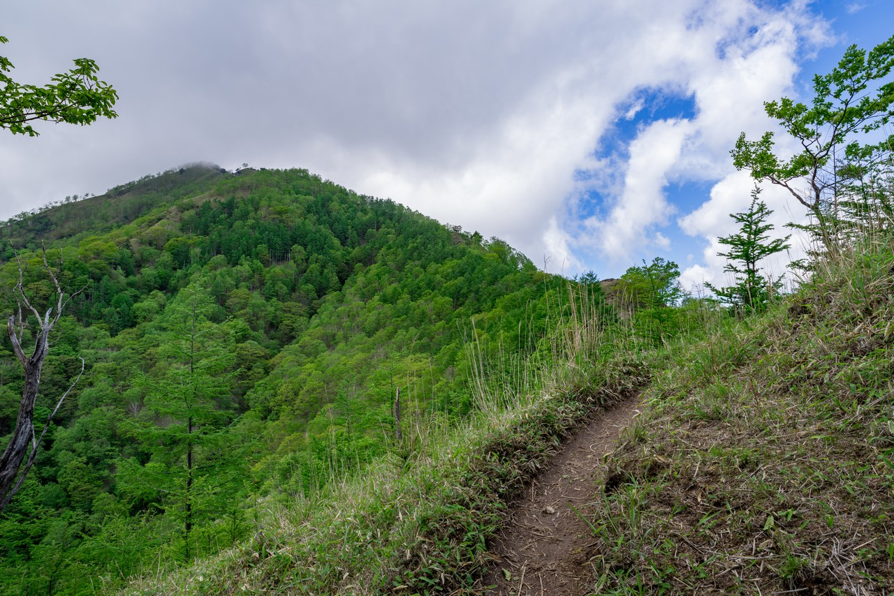 210604黒檜岳-036