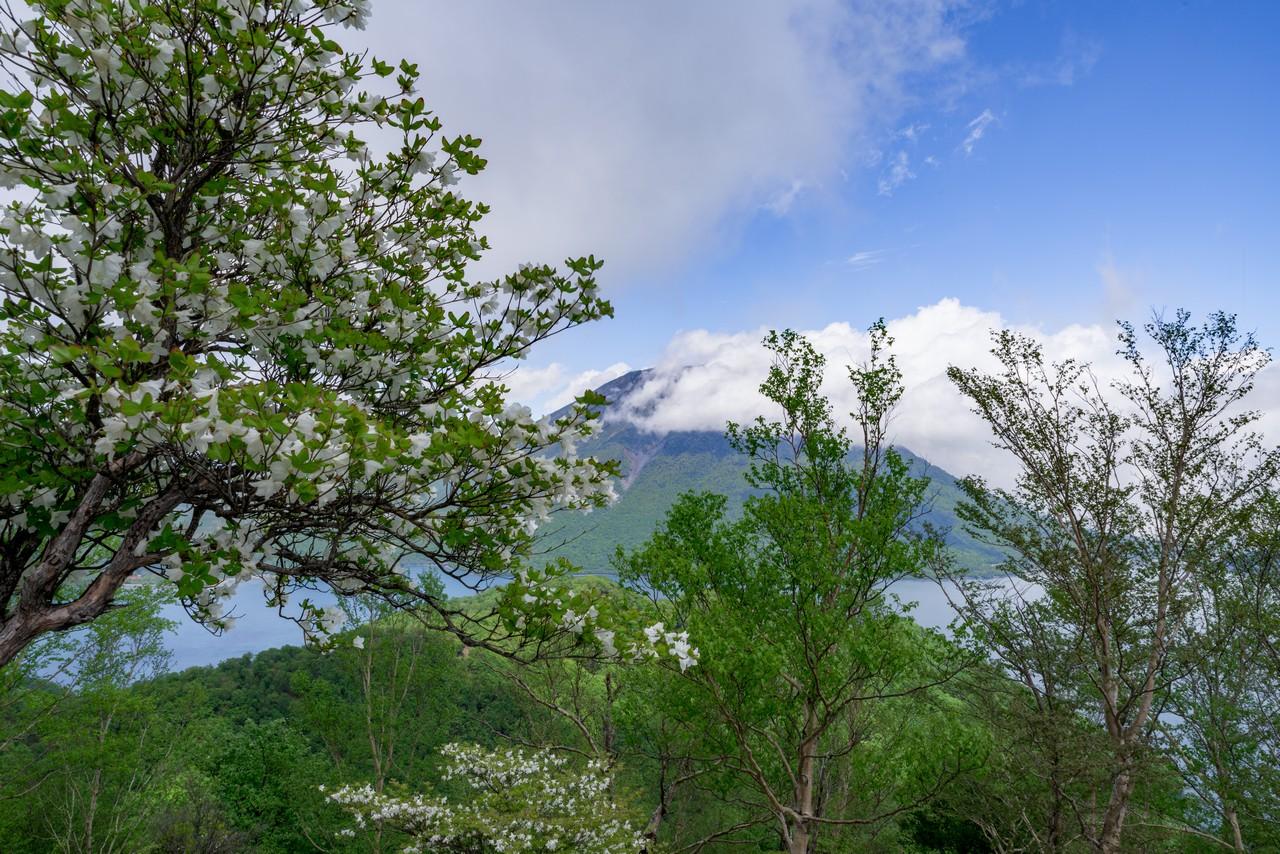 210604黒檜岳-039