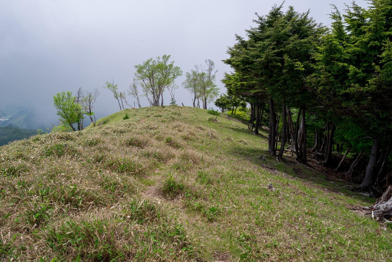 210604黒檜岳-050