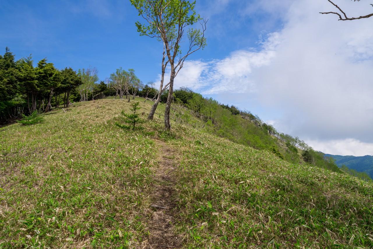 210604黒檜岳-051