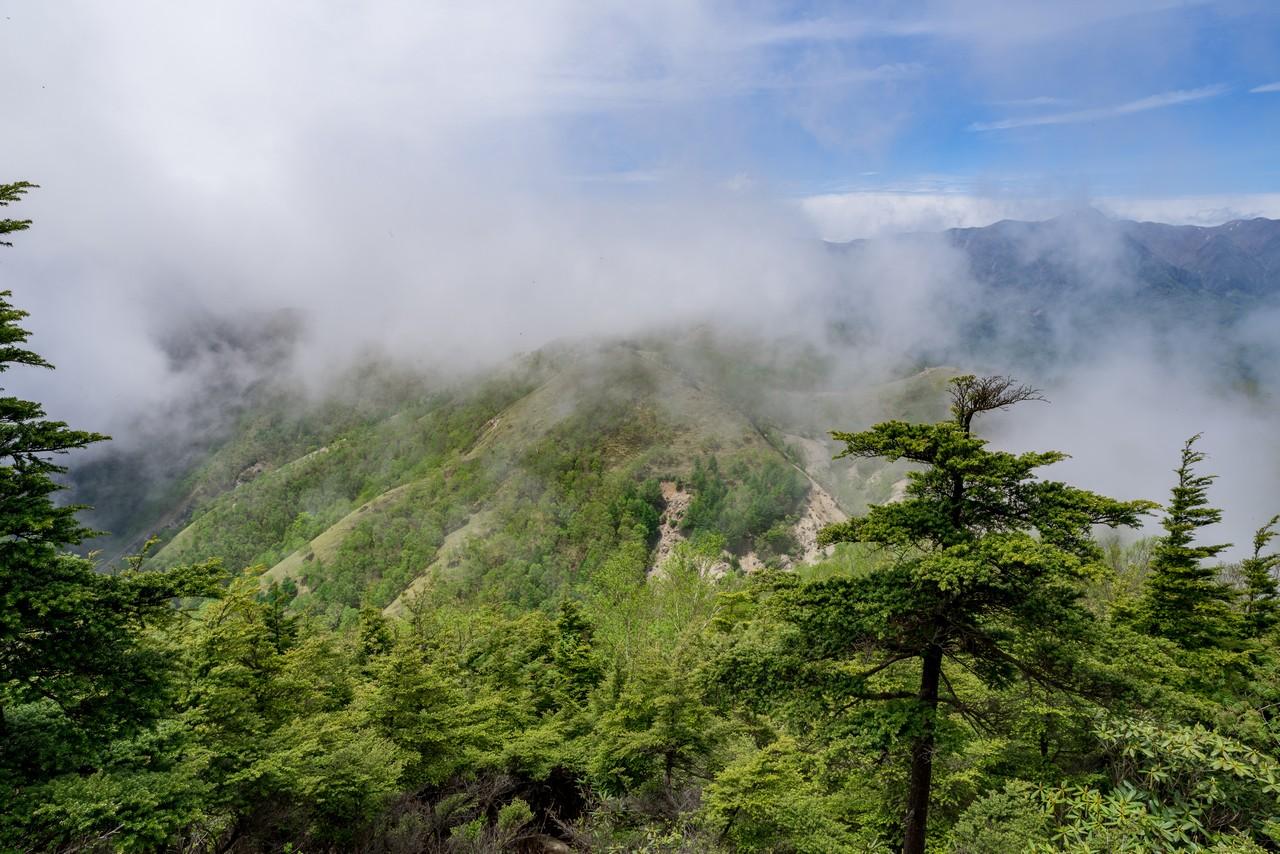 210604黒檜岳-053