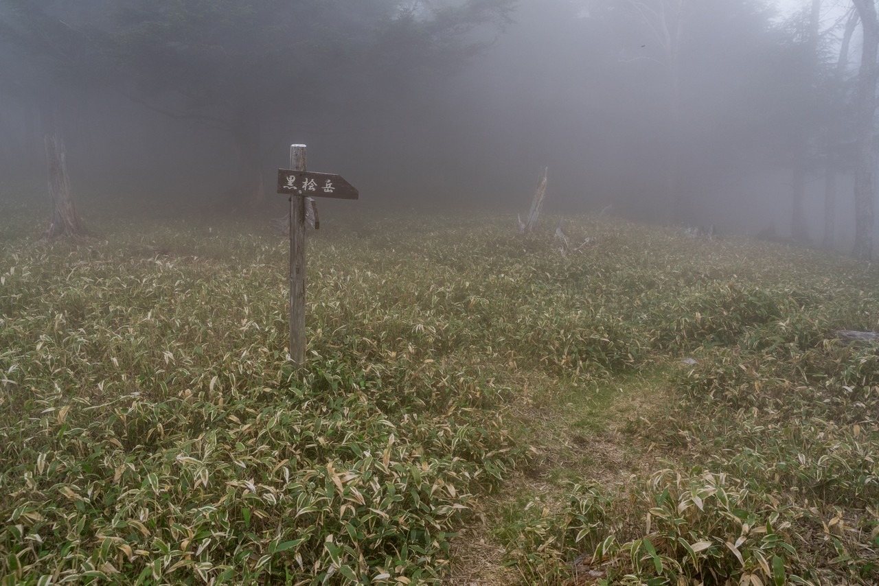 210604黒檜岳-067