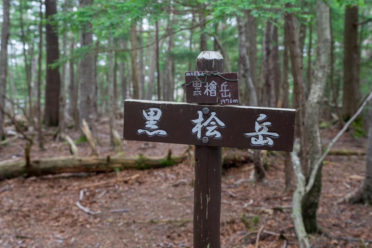 210604黒檜岳-073