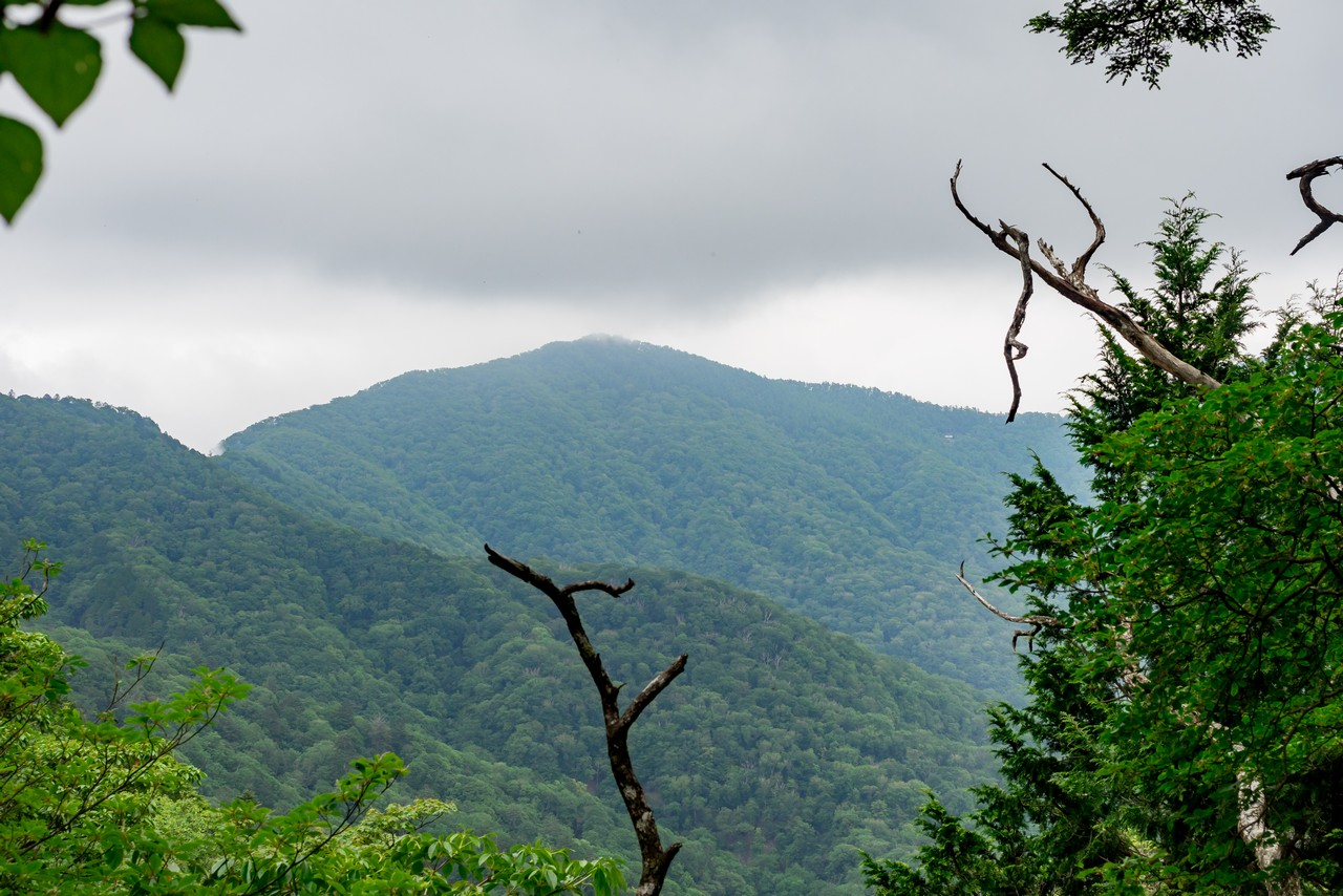 ウトウの頭付近から見た酉谷山