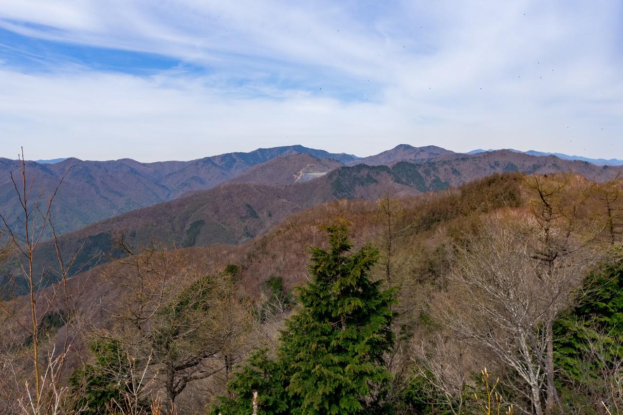 天目山から見たタワ尾根