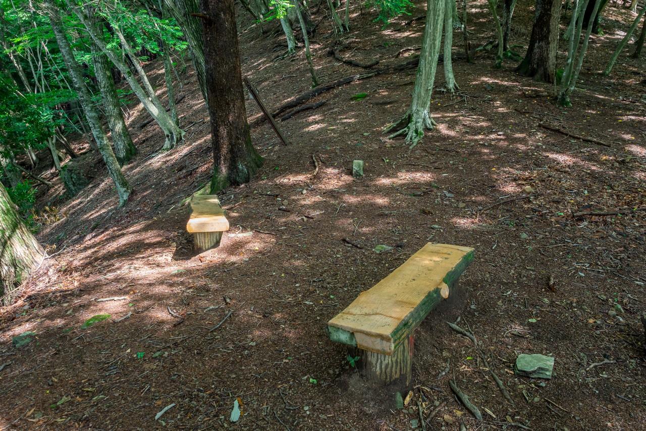 タワ尾根のベンチスペース