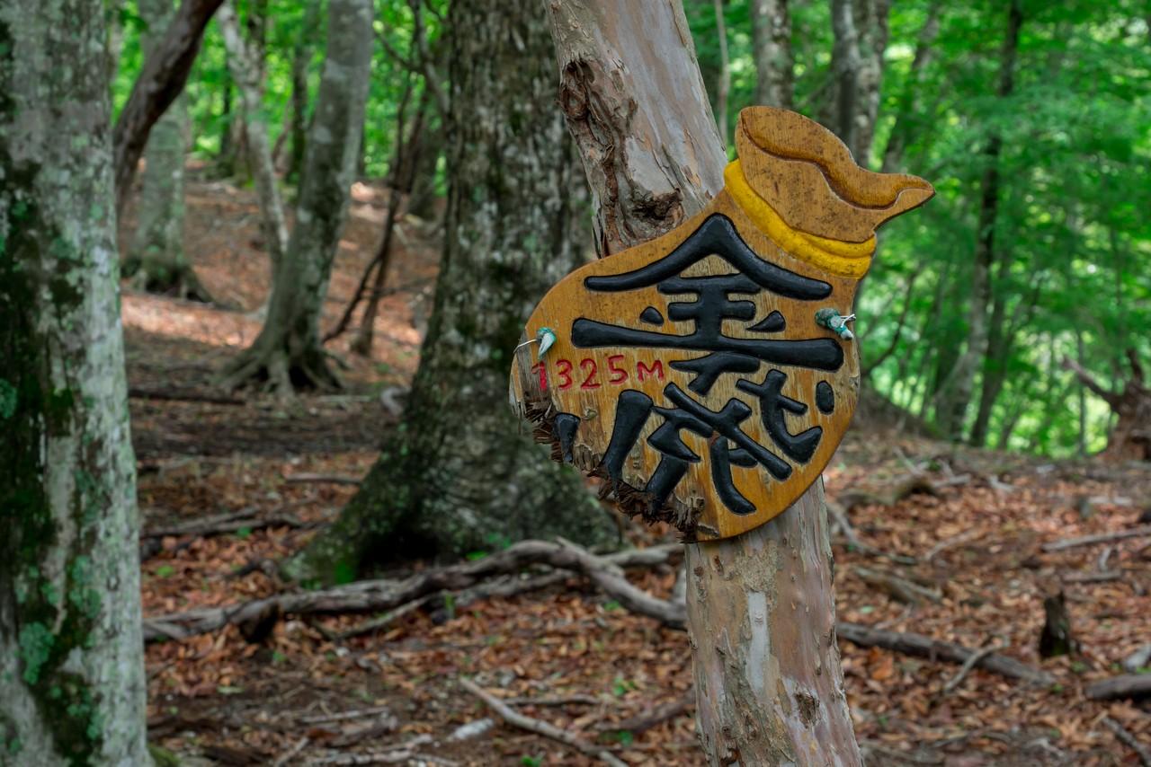 タワ尾根 金袋山の手製標識