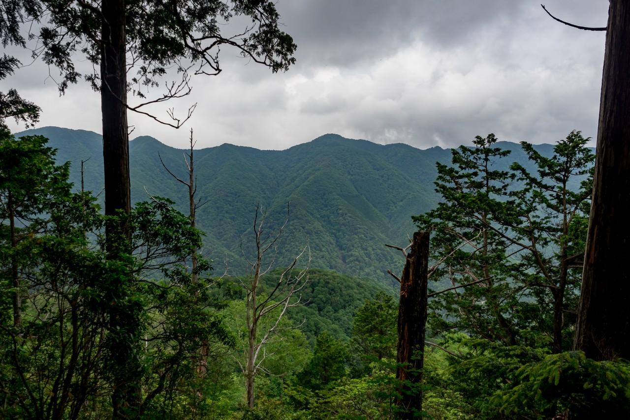 タワ尾根から見た長沢背稜