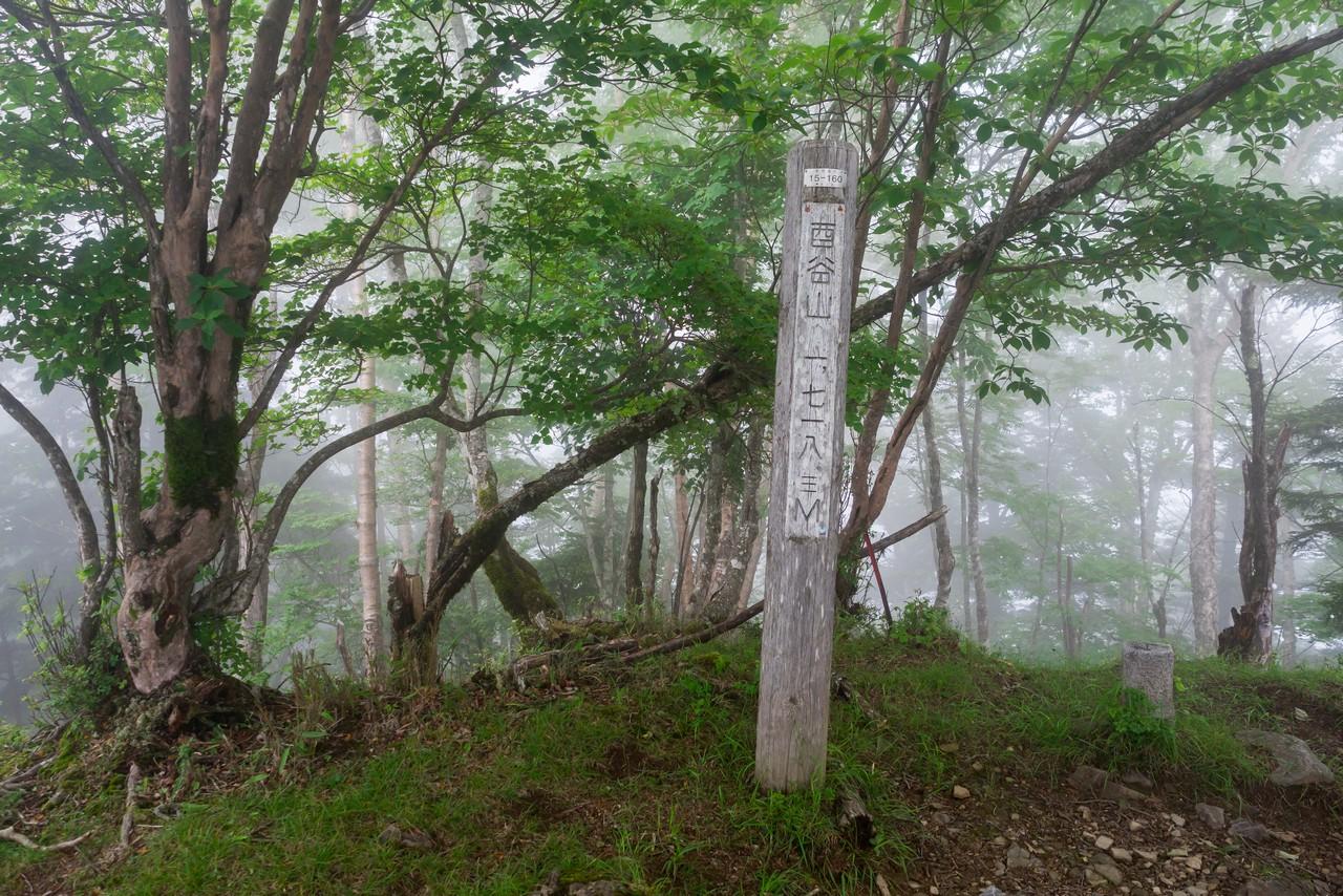 酉谷山の山頂