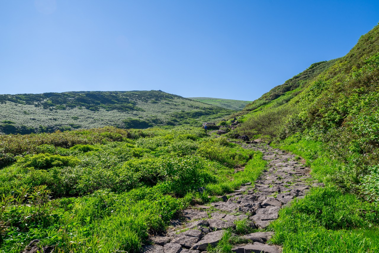 鳥海山 象潟口コースの登山道