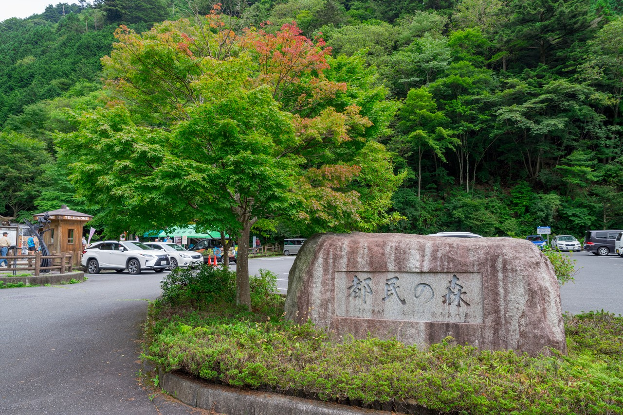 210821檜原村滝巡り-006
