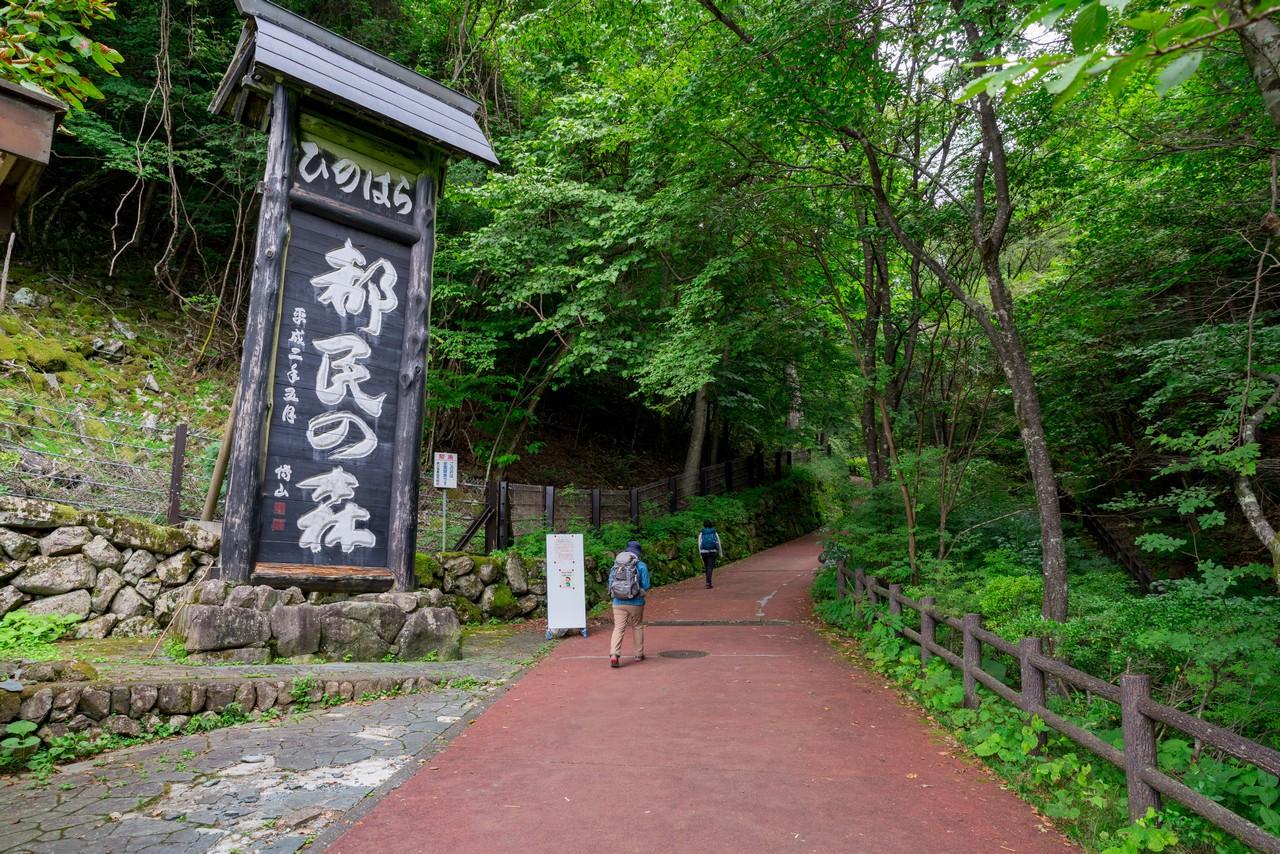 210821檜原村滝巡り-007