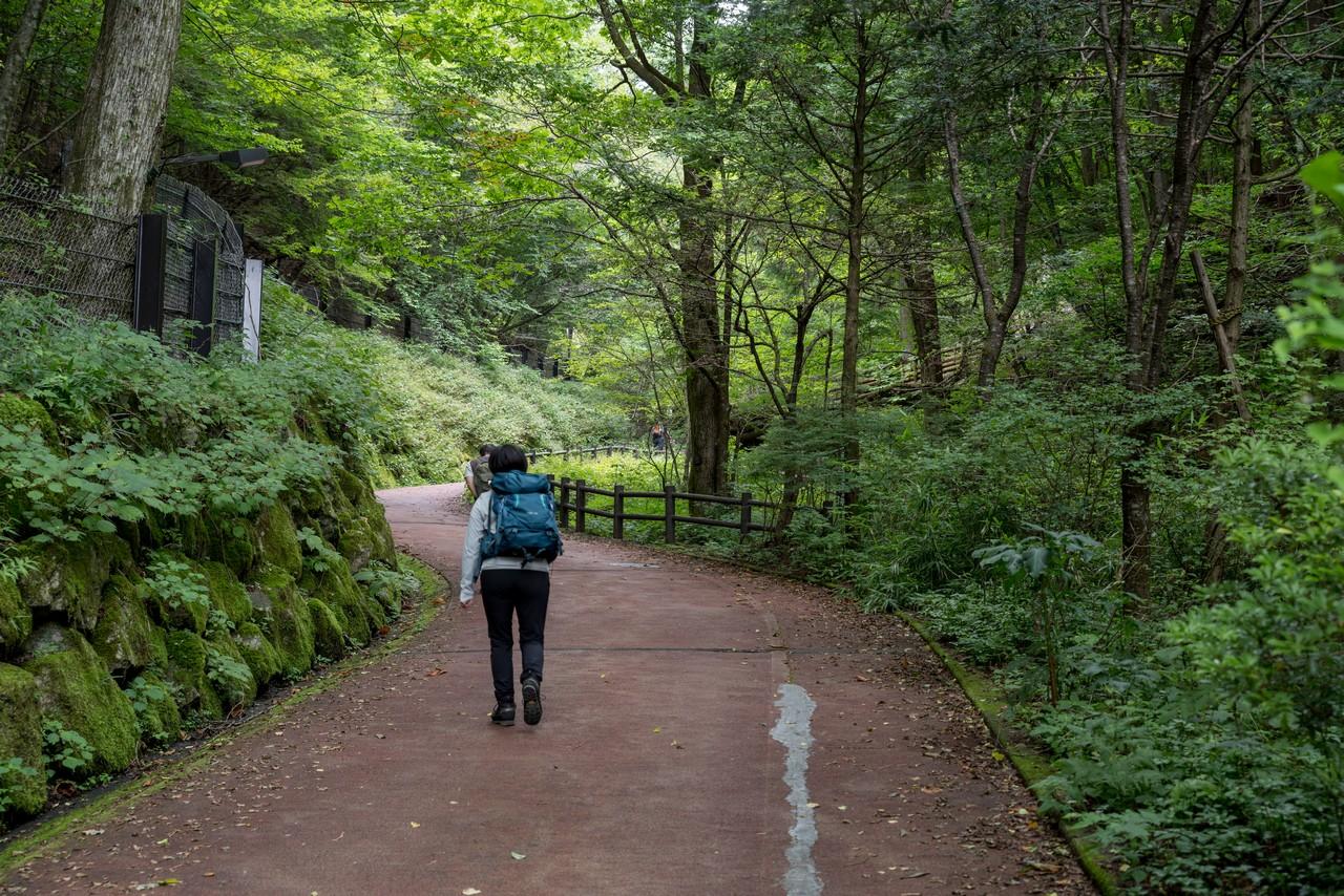 210821檜原村滝巡り-008
