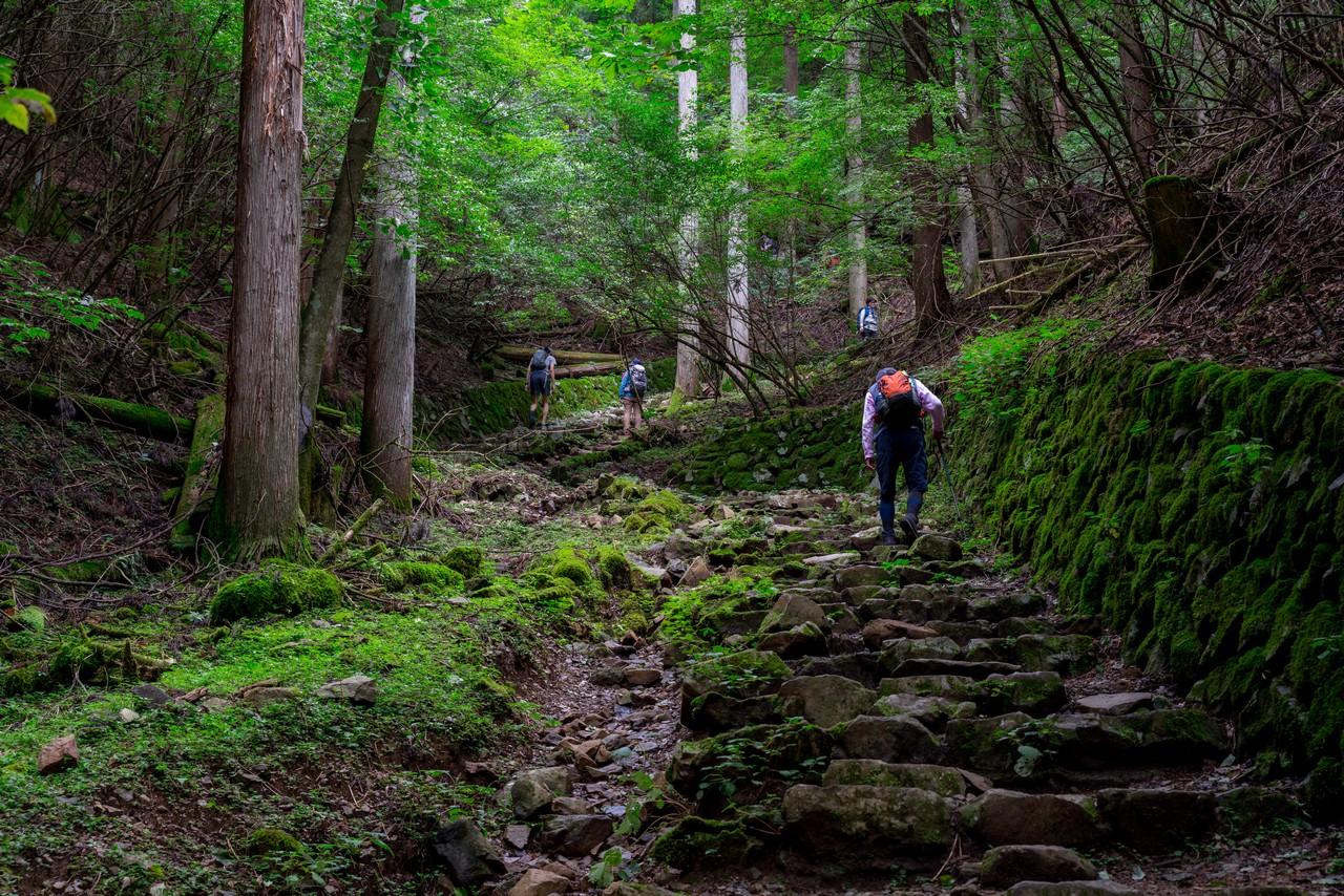 210821檜原村滝巡り-010