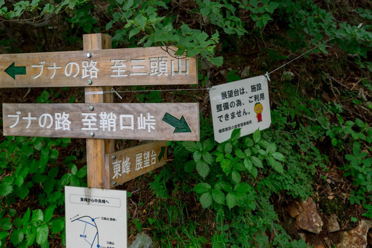 210821檜原村滝巡り-016