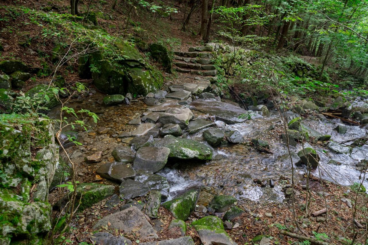 210821檜原村滝巡り-027