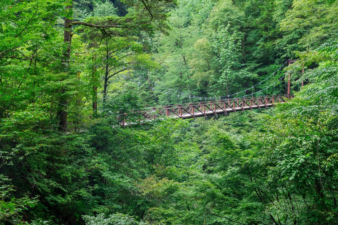 210821檜原村滝巡り-029
