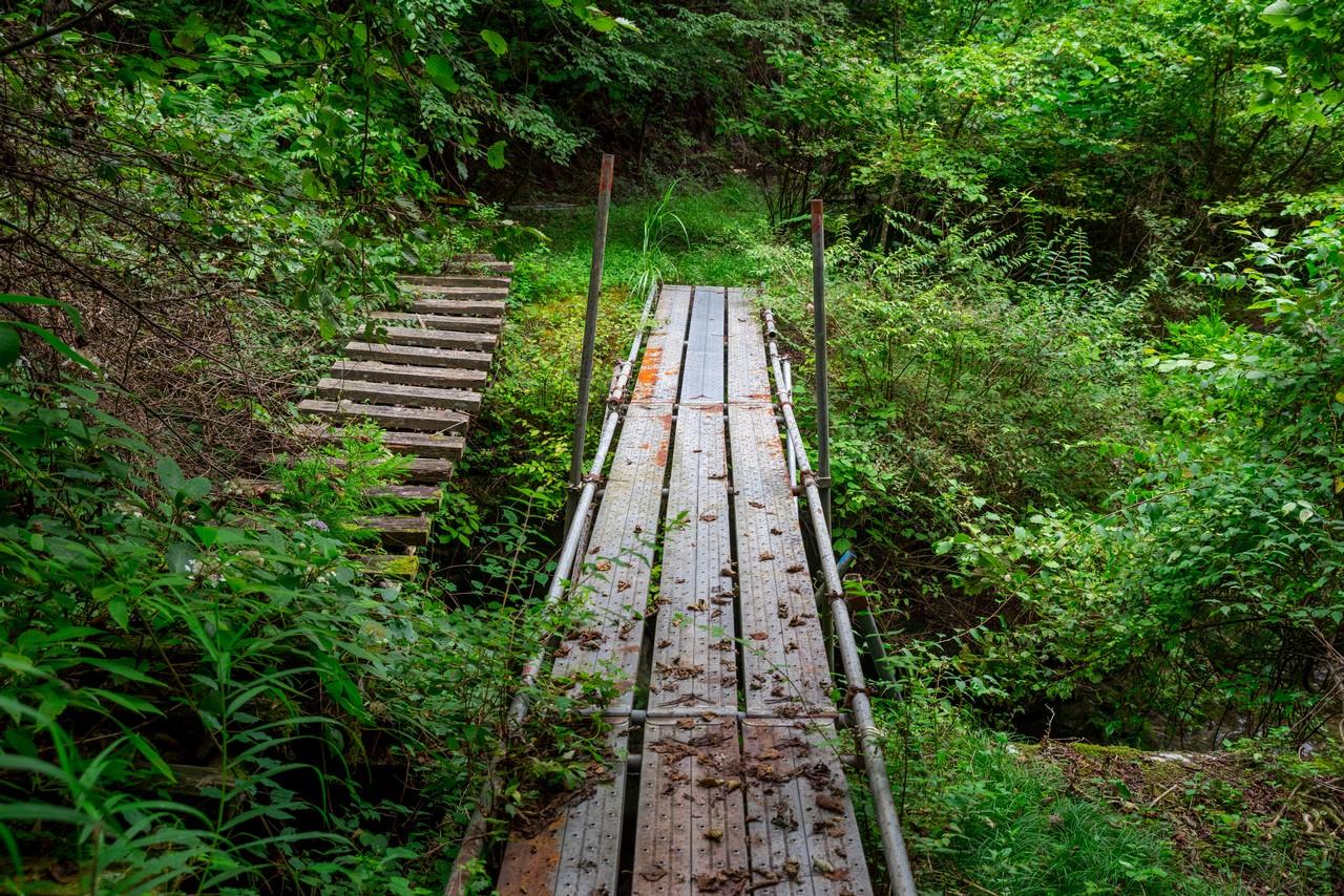 210821檜原村滝巡り-038