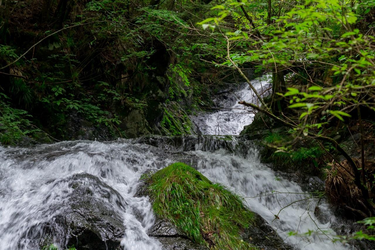 210821檜原村滝巡り-043