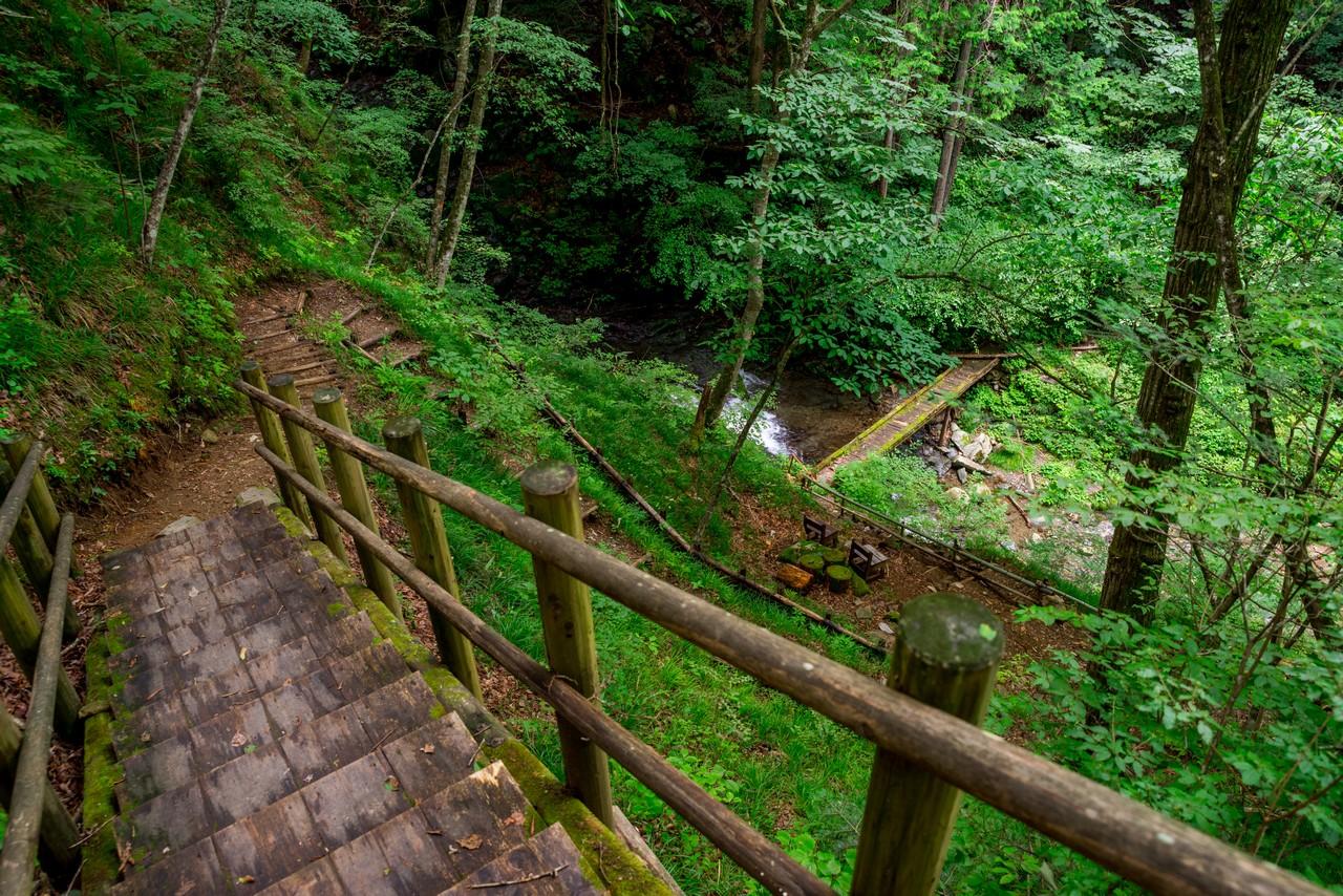 210821檜原村滝巡り-055