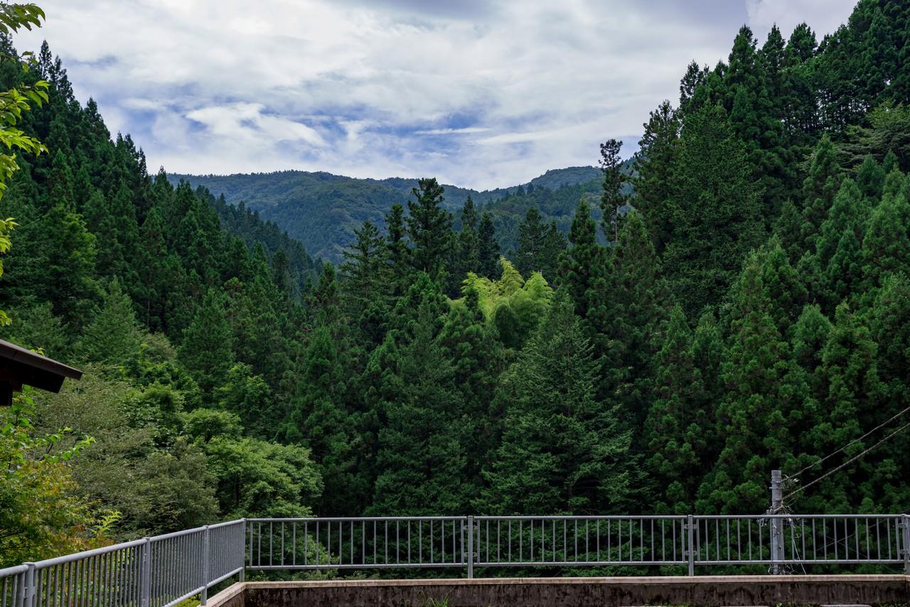210821檜原村滝巡り-063