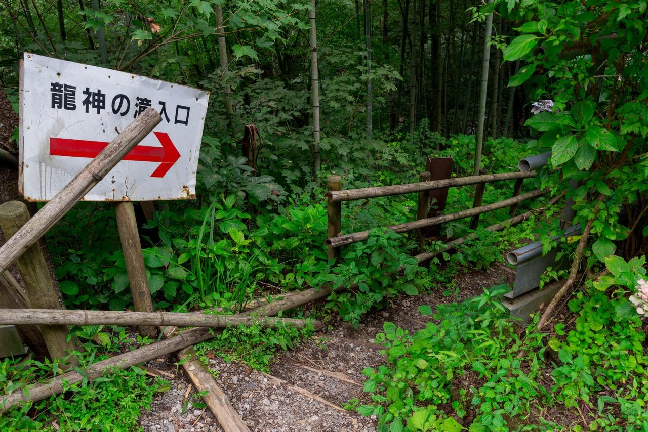210821檜原村滝巡り-067